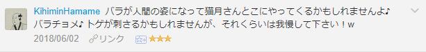 f:id:necozuki299:20181226011355p:plain