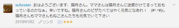f:id:necozuki299:20190103052050p:plain
