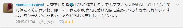 f:id:necozuki299:20190105200027p:plain