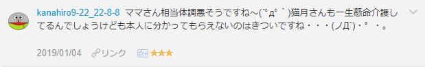 f:id:necozuki299:20190105200044p:plain