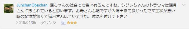 f:id:necozuki299:20190105200105p:plain