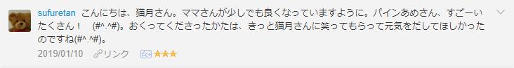 f:id:necozuki299:20190110194332p:plain
