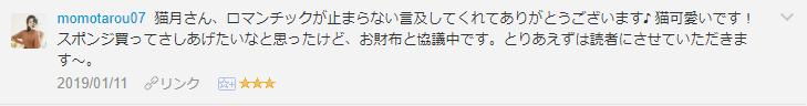 f:id:necozuki299:20190111182336p:plain
