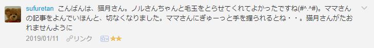 f:id:necozuki299:20190112123600p:plain