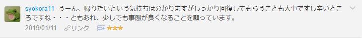f:id:necozuki299:20190112123635p:plain