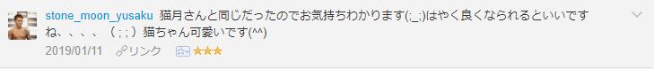 f:id:necozuki299:20190112123640p:plain