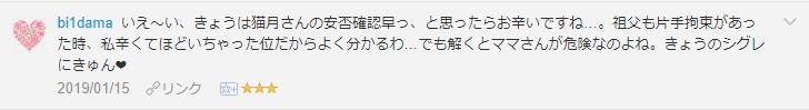 f:id:necozuki299:20190116194355p:plain