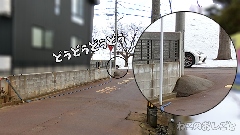 f:id:necozuki299:20190120022920j:plain