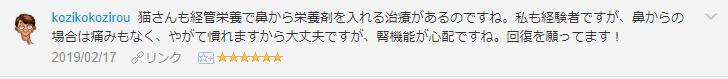 f:id:necozuki299:20190218152036p:plain