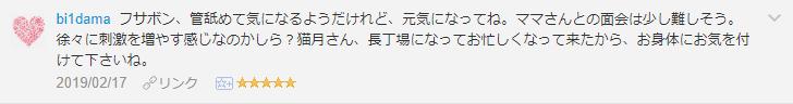 f:id:necozuki299:20190218152041p:plain