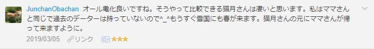 f:id:necozuki299:20190305214450p:plain
