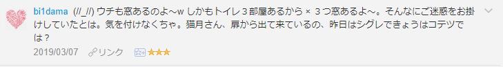 f:id:necozuki299:20190308185059p:plain