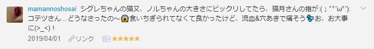 f:id:necozuki299:20190403002839p:plain
