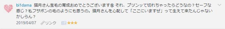 f:id:necozuki299:20190408161052p:plain