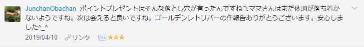 f:id:necozuki299:20190410200806p:plain