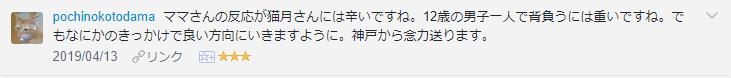 f:id:necozuki299:20190414190858p:plain