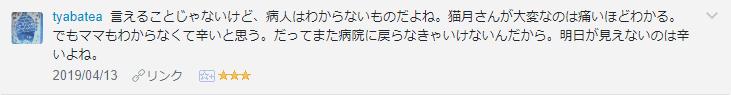 f:id:necozuki299:20190414190913p:plain