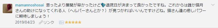 f:id:necozuki299:20190424004242p:plain
