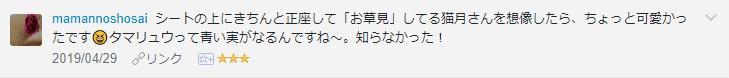 f:id:necozuki299:20190430114404p:plain