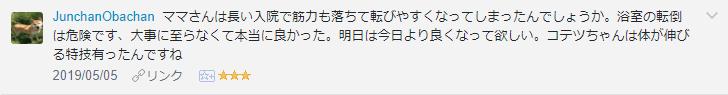 f:id:necozuki299:20190506160437p:plain