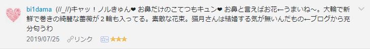 f:id:necozuki299:20190726214025p:plain