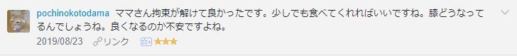 f:id:necozuki299:20190824125426p:plain