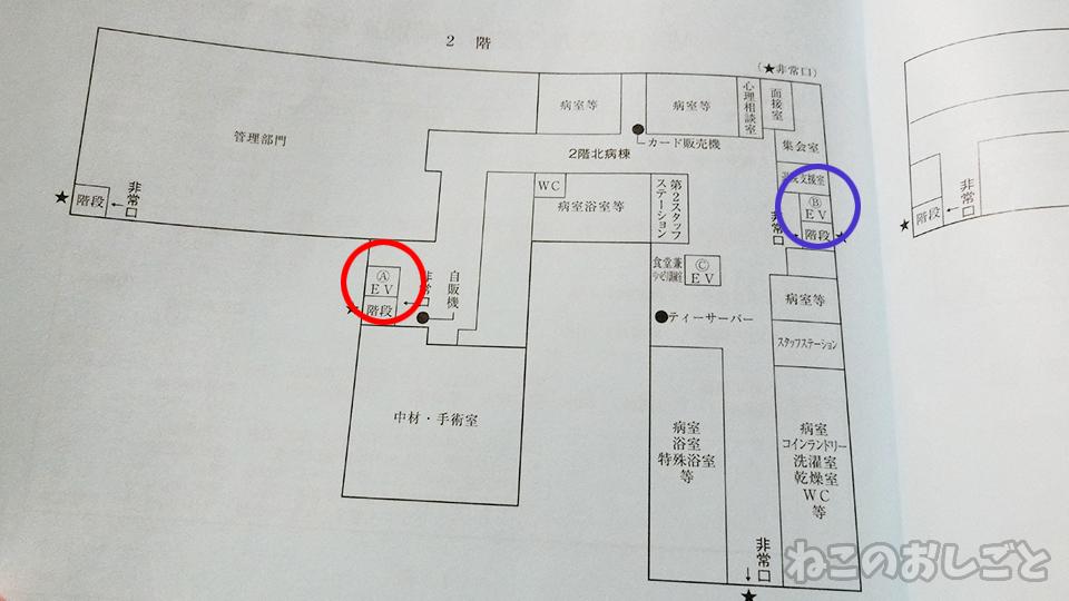 f:id:necozuki299:20191208170335j:plain