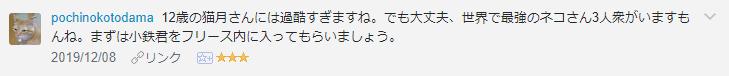 f:id:necozuki299:20191209154524p:plain