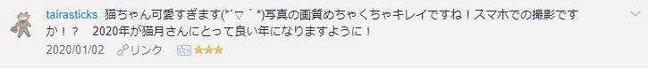 f:id:necozuki299:20200102145816p:plain