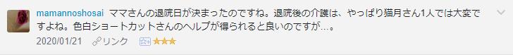 f:id:necozuki299:20200122122017p:plain
