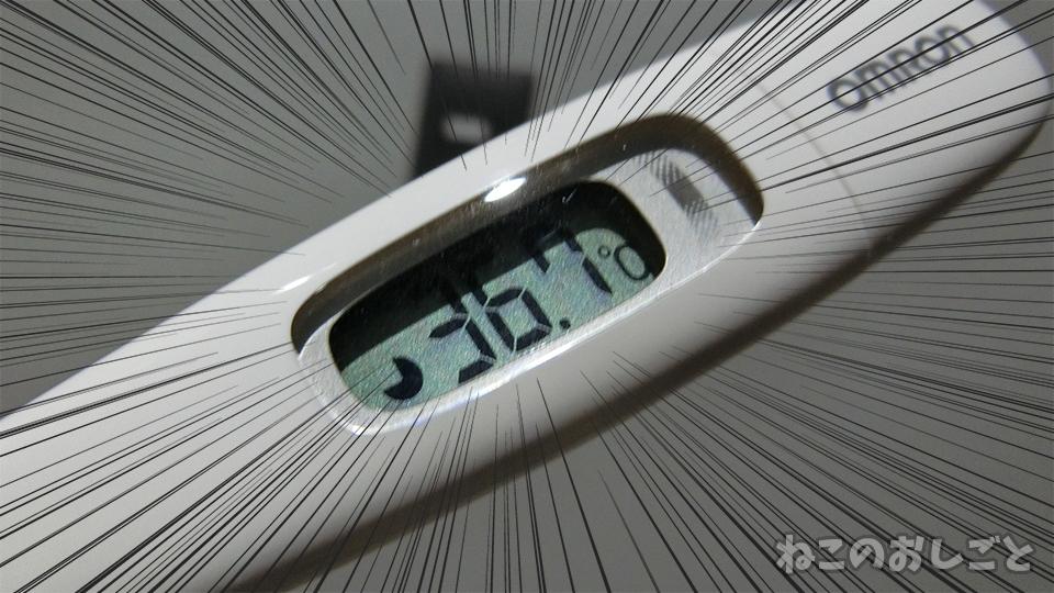 f:id:necozuki299:20200214191221j:plain