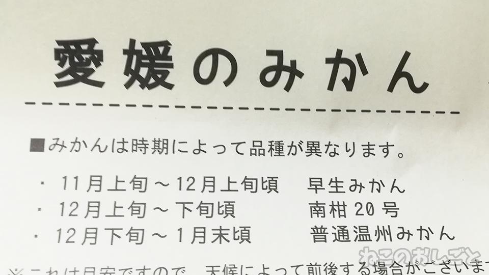 f:id:necozuki299:20200221173800j:plain