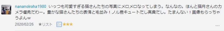 f:id:necozuki299:20200226181742p:plain