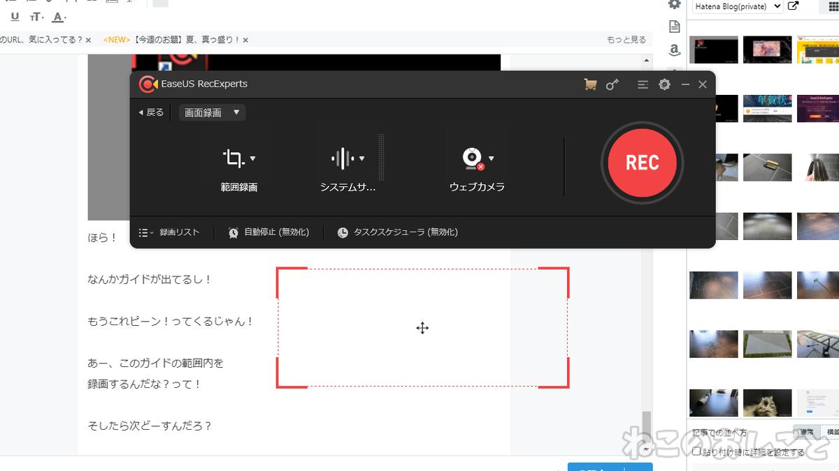 f:id:necozuki299:20200827143326j:plain