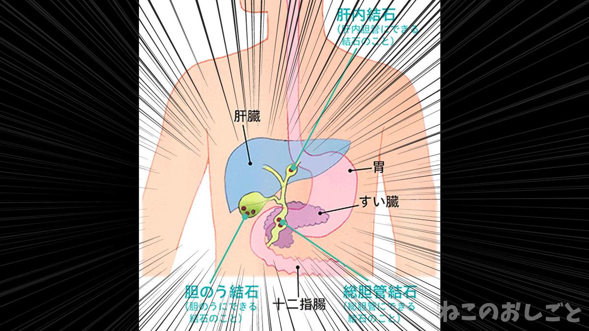 f:id:necozuki299:20210706201030j:plain