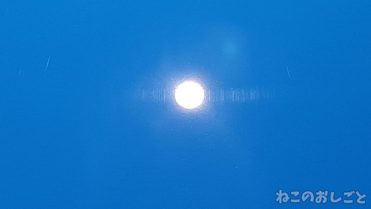 f:id:necozuki299:20210819161959j:plain