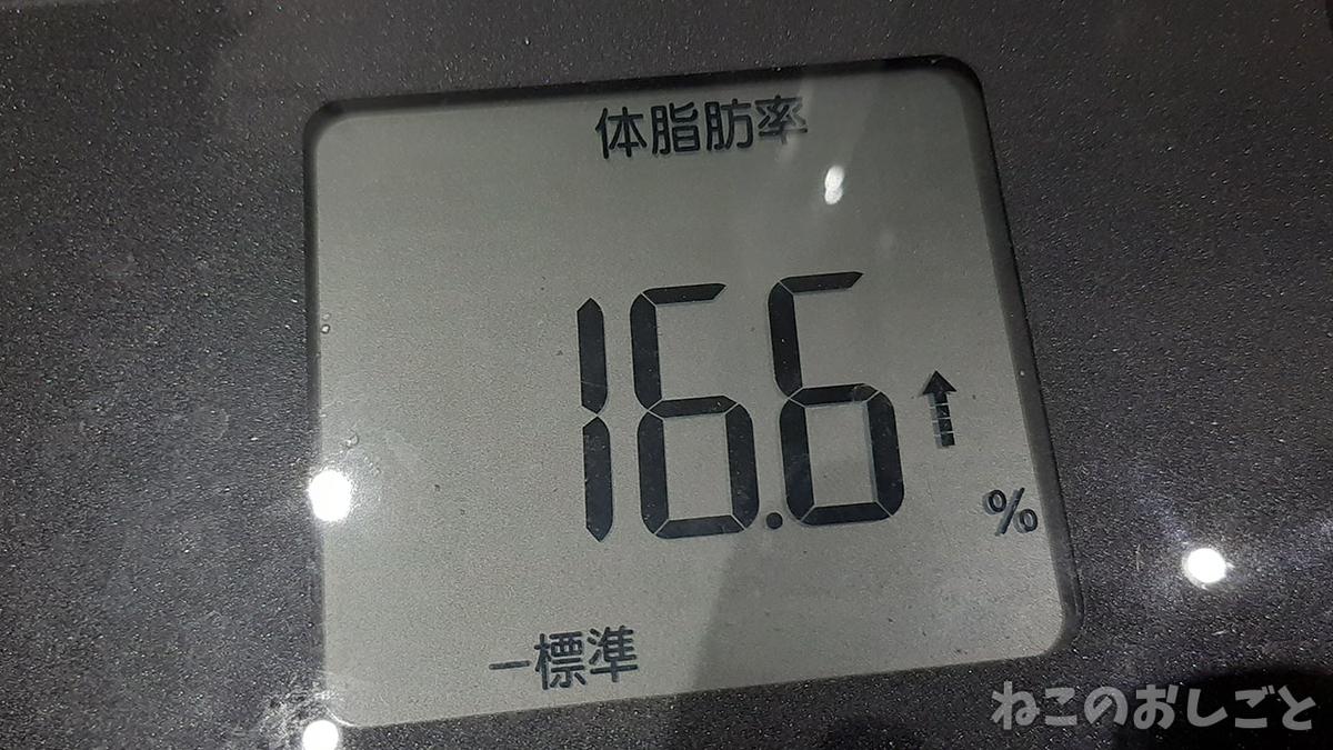f:id:necozuki299:20211011170013j:plain