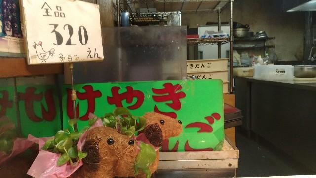 f:id:negishiyoshiyuki5:20180224190201j:plain
