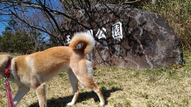 f:id:negishiyoshiyuki5:20180317122719j:plain