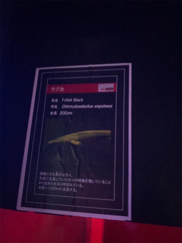 f:id:negototsukasa:20200120170601j:plain