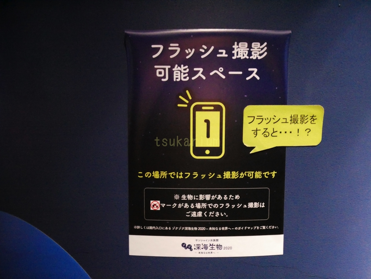 f:id:negototsukasa:20200123234013j:plain