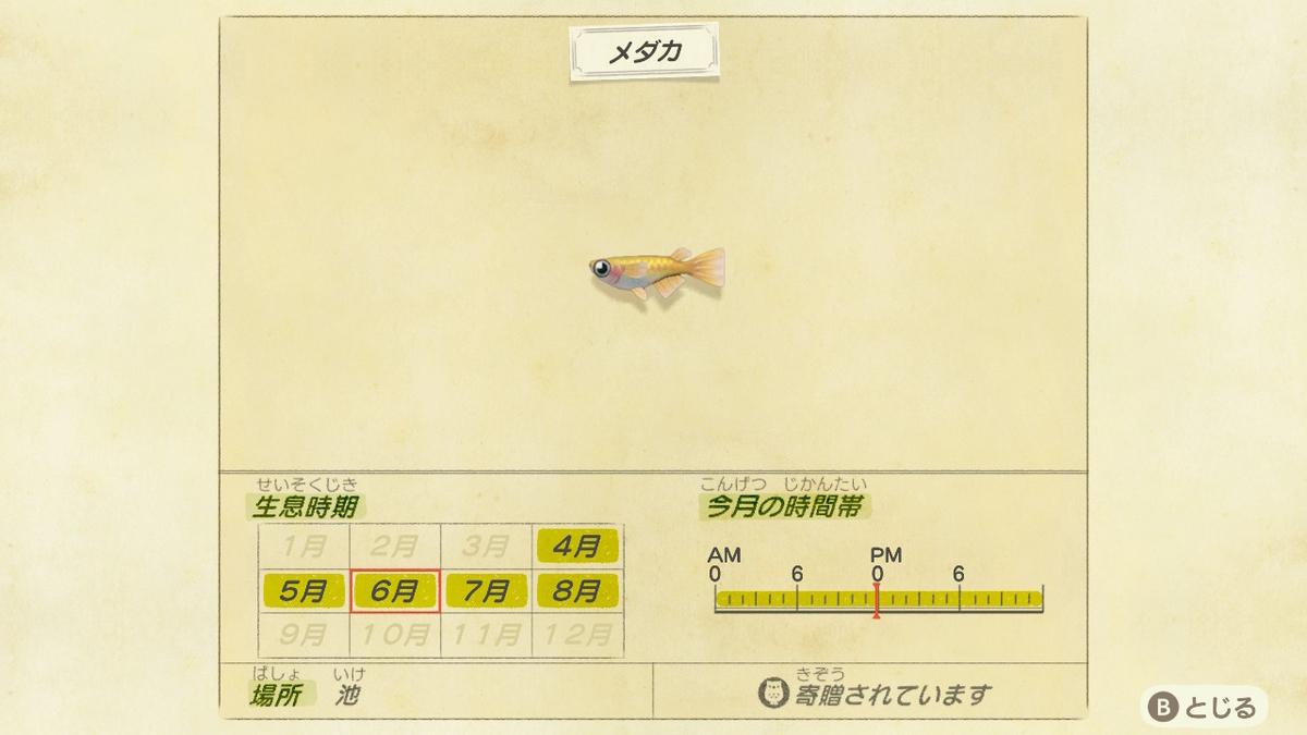 f:id:negototsukasa:20200330173723j:plain