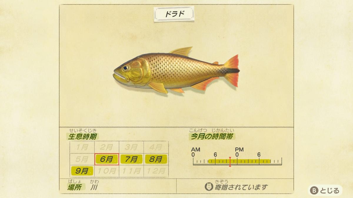 f:id:negototsukasa:20200330173732j:plain
