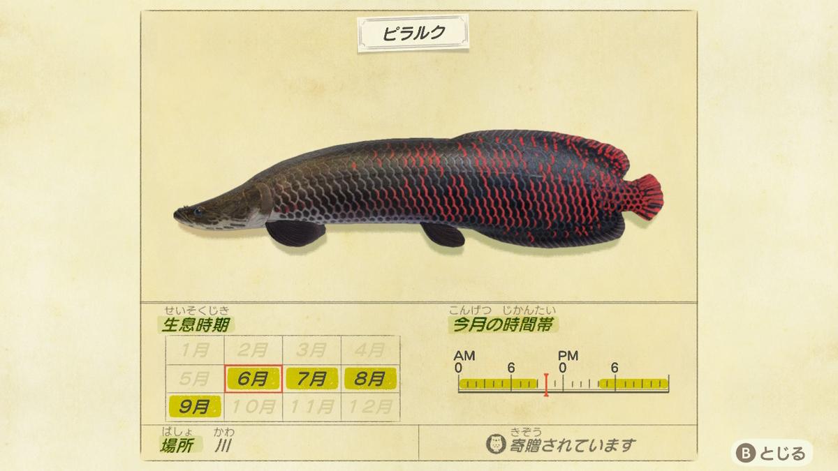 f:id:negototsukasa:20200330173736j:plain