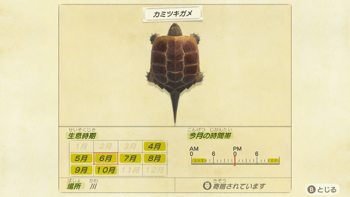 f:id:negototsukasa:20200330173818j:plain