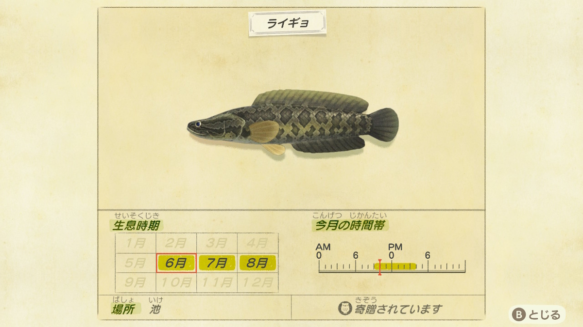 f:id:negototsukasa:20200330173849j:plain