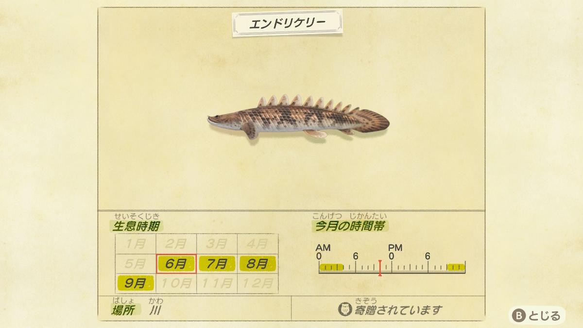 f:id:negototsukasa:20200330173933j:plain