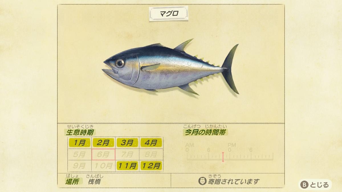 f:id:negototsukasa:20200330174410j:plain