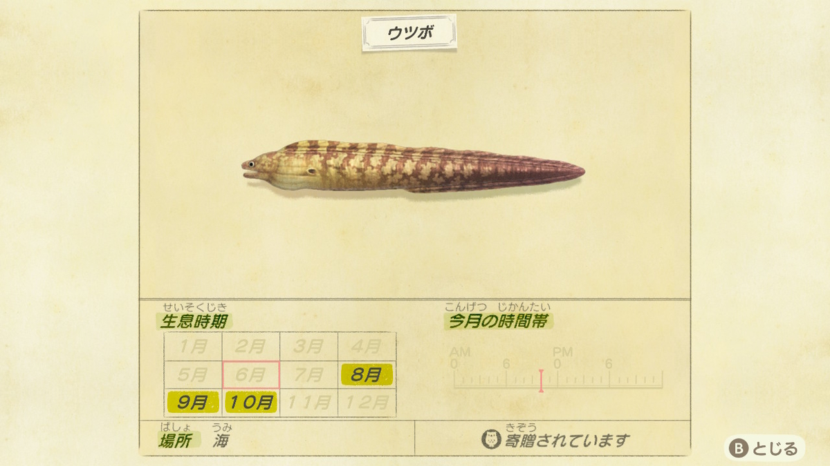 f:id:negototsukasa:20200330174555j:plain