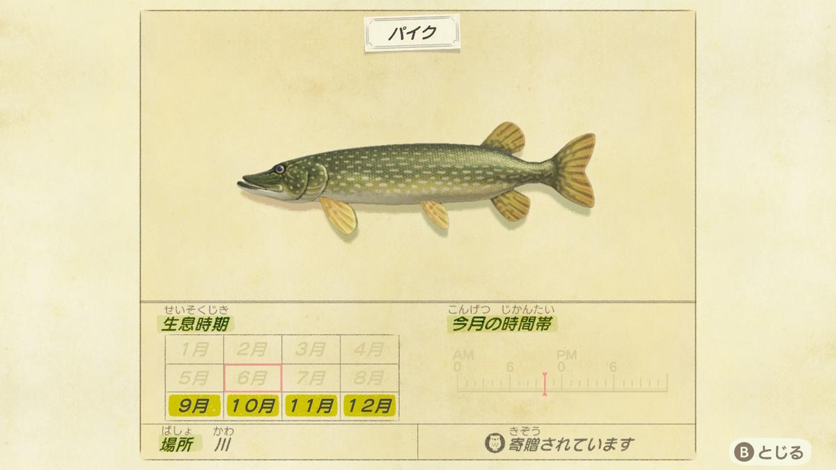 f:id:negototsukasa:20200330174602j:plain